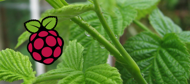 raspberry_pi_head